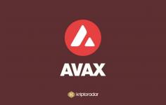 Avax Coin Nedir?