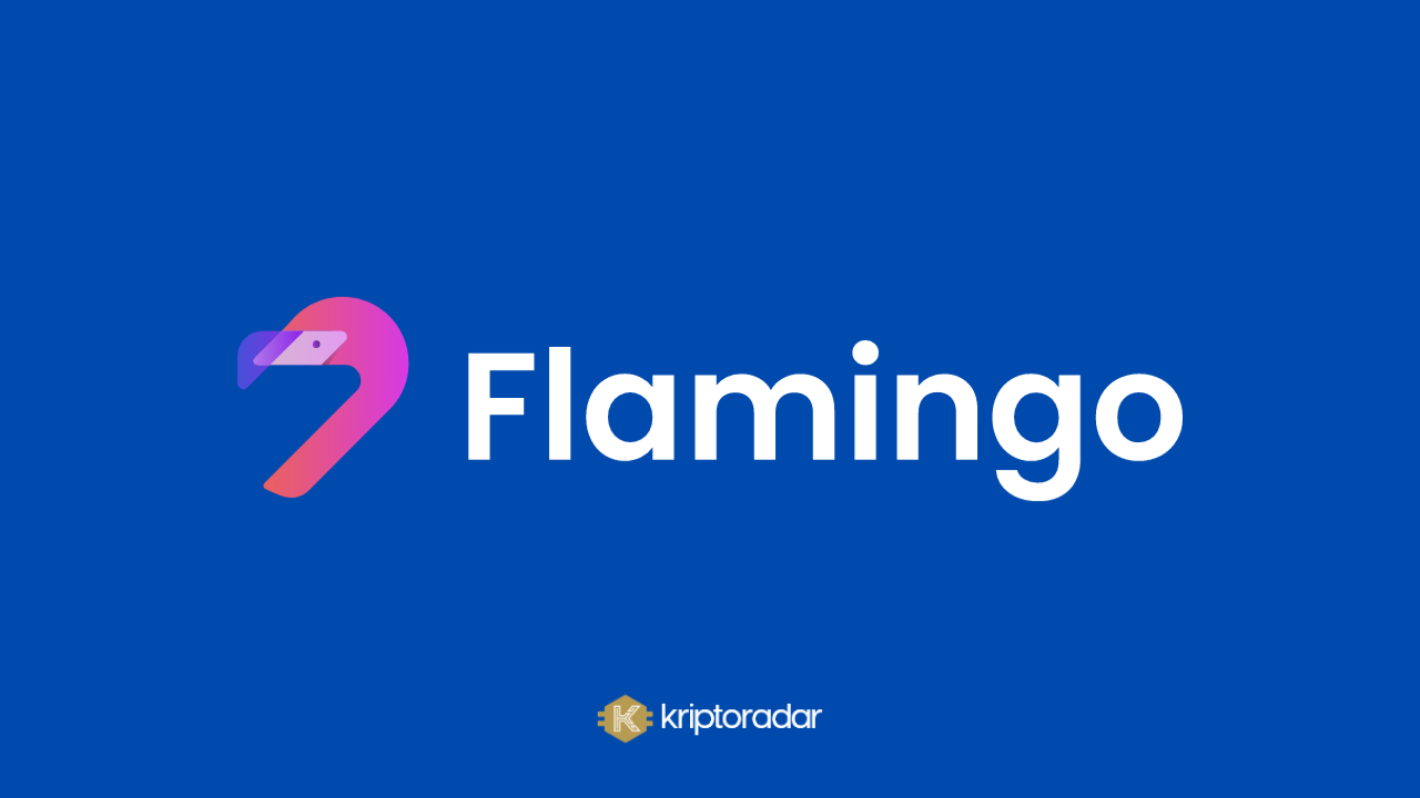 Flamingo (FLM) Coin Nedir? Geleceği Hakkında Yorumlar Neler?