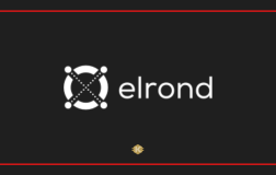 Elrond EGLD Coin Nedir? Geleceği Hakkında Yorumlar Nelerdir?