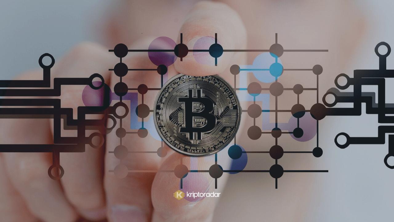 En İyi 12 Bitcoin Sitesi