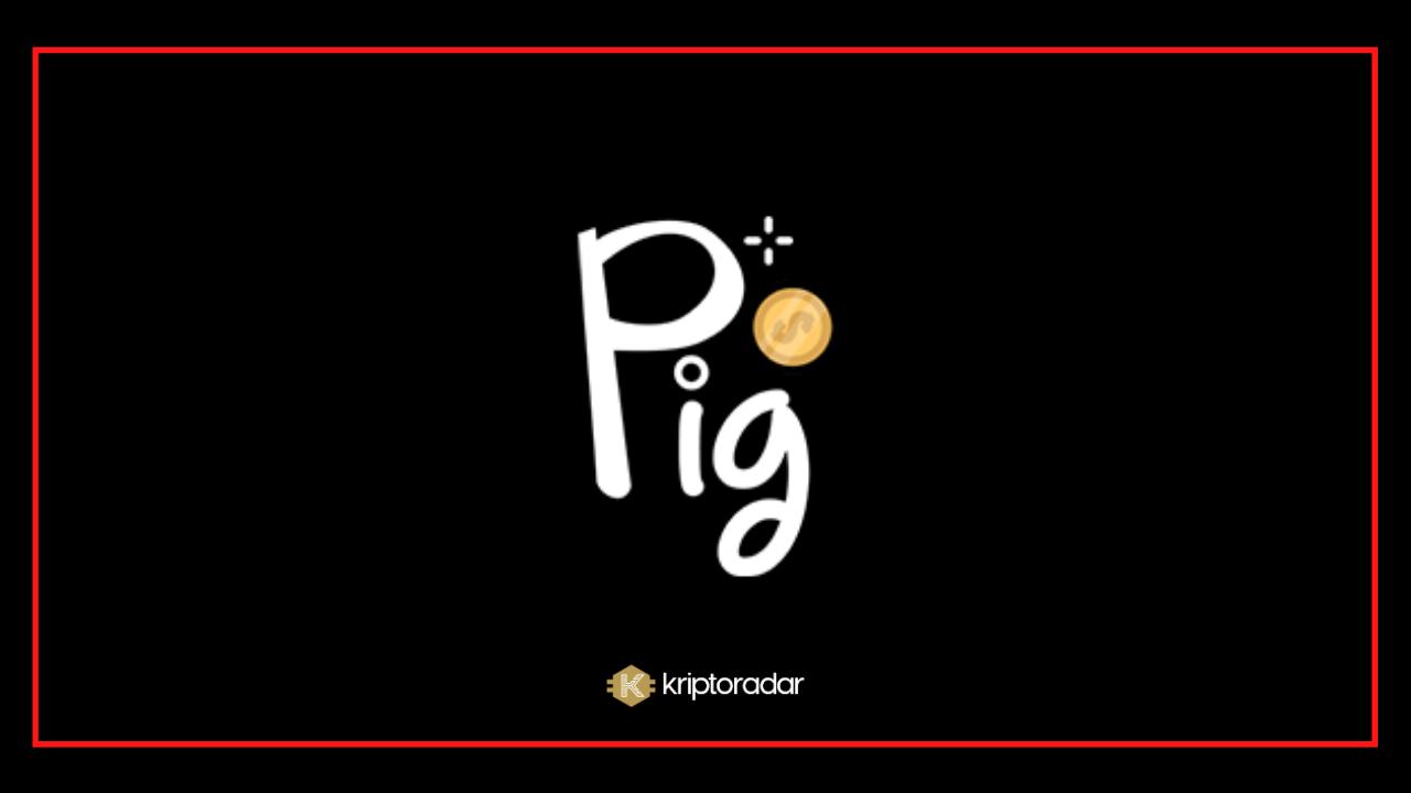 Pig Finance, PIG Coin Nedir? Geleceği Hakkında Yorumlar Nelerdir?