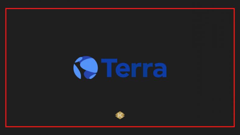 Terra LUNA Nedir, Geleceği Hakkında Yorumlar Nelerdir