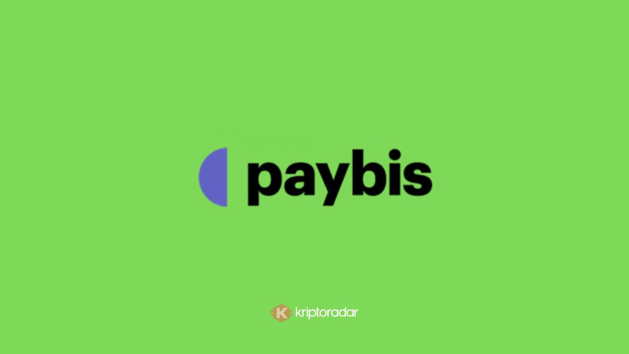 Paybis Kripto Para Borsası