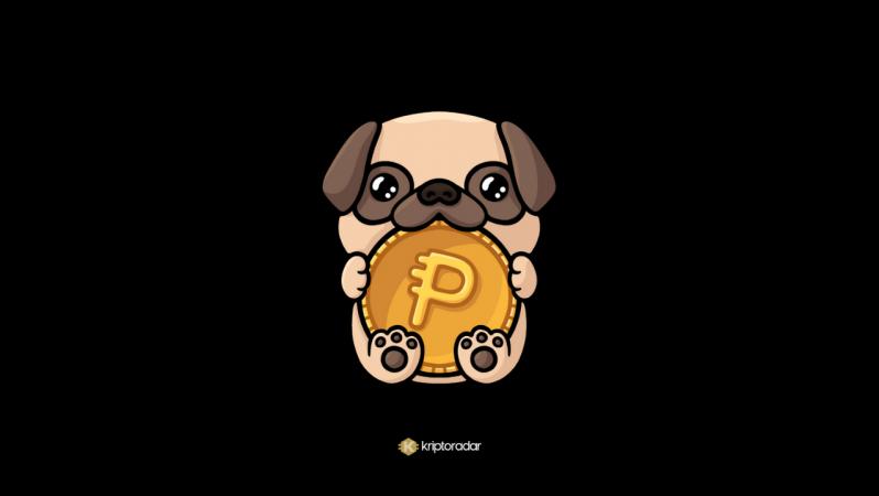Pug Cash Coin Nedir, Geleceğine Dair Yorumlar