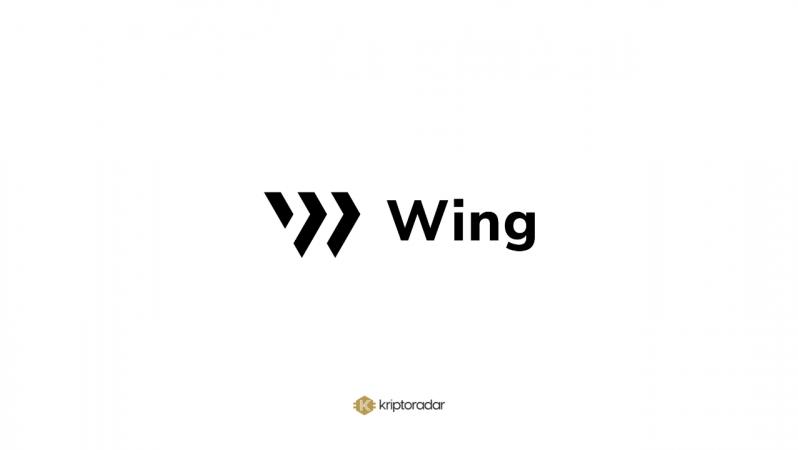 Wing Nedir, Hangi Avantajları Sunar?